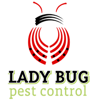 Lady Bug Pest Control Logo